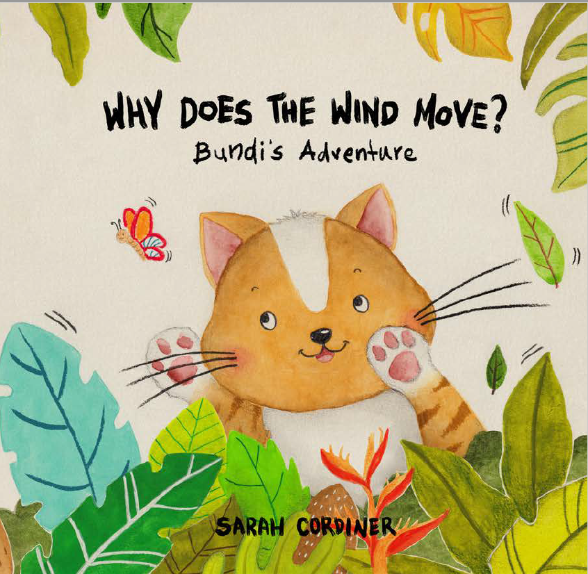 sarah cordiner childrens book - why does the wind move